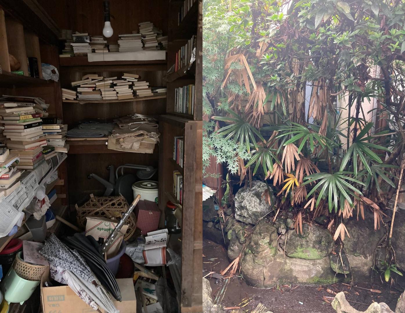 広島市西区にて本でいっぱいの物置と庭木の伐採